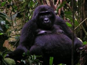 Uganda 110b Mom